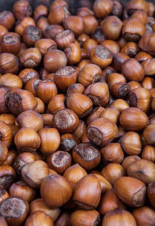 cobnut: Whole hazelnuts background closeup macro