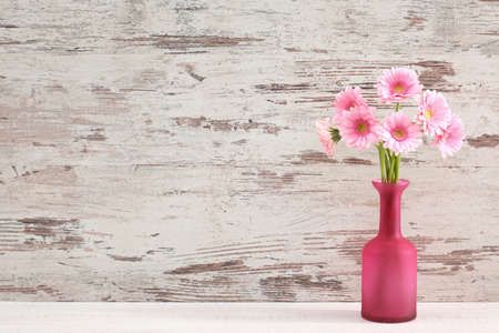 Gerbera with a large beautiful inflorescence is a wonderful decoration. Reklamní fotografie - 98559487