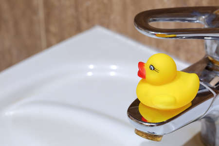 Rubber duck as well as the interior of the bathroom.