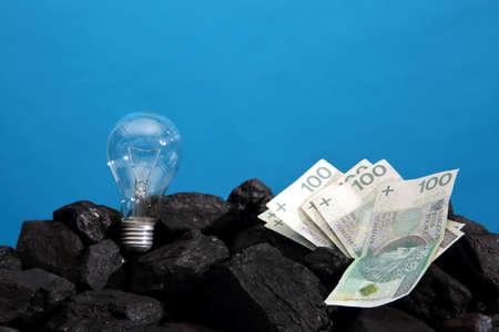 A light bulb and Polish banknotes lie on a hard coal like a symbol of energy and wealth. Banco de Imagens