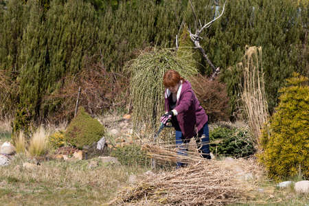 Pile of dry grass. Middle-aged red-haired girl. Cleaning up the recreational plot. Sunny day.