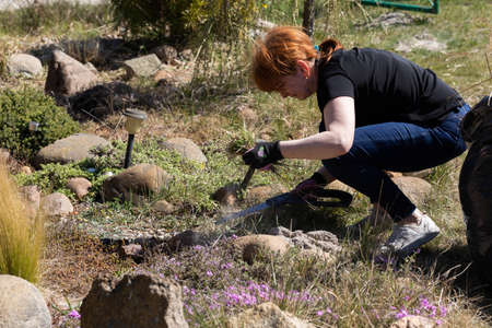 Middle-aged red-haired girl. Recreational land. Spring cleaning in the garden. Dry decorative grass.