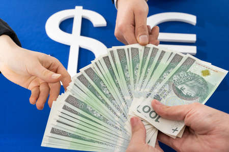 Currency exchange during financial transactions in different currencies often causes large commissions for intermediaries.