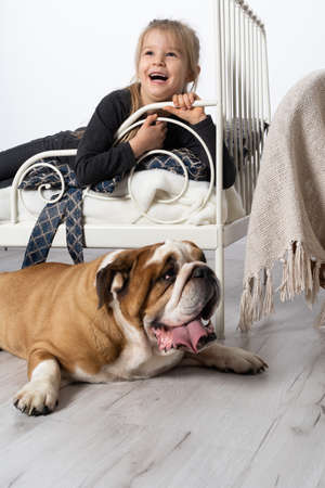In the girls bedroom there is an English bulldog next to her bed and the child is lying on the bed and accosts the dog. A breed with a brown coat with white patches.