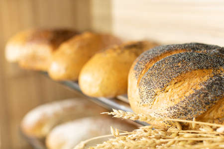 On a store shelf is a fresh loaf of wheat-flour bread dipped in blue poppy seeds.