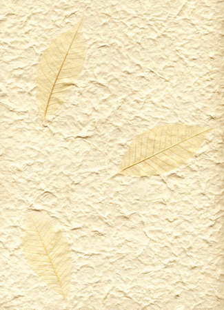 Background with decorative fabric sheet vat paper and three leaves on it photo