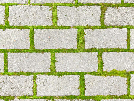 suture: Modern brick causeway. Gray square bricks. Green Grass suture