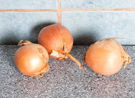 Three onion bulbs on a blue table in the kitchen