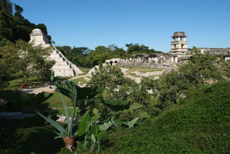 Maya temples of the archeological site of Palenque photo
