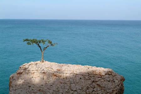 La costa dell'isola di Socotra, Yemen Archivio Fotografico