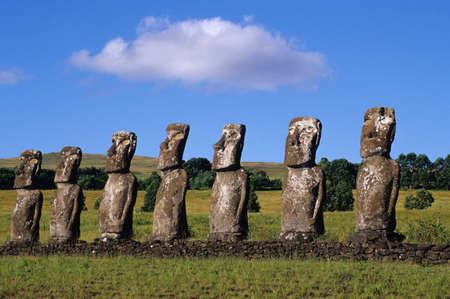 easter island: Moai of Easter Island
