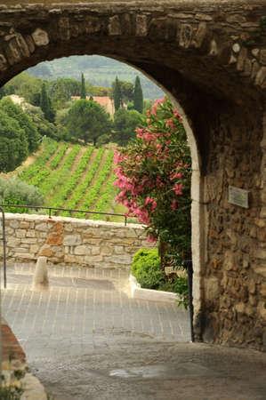 vi�edo: Paisaje rural en Le Castellet en Francia