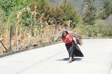 marcos: Guatemala,San Marcos de la Laguna, 8 February 2014, Maya woman carrying pieces of wood for heating their home