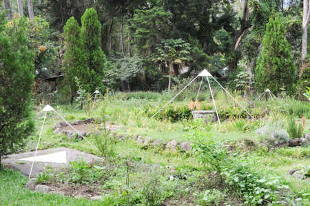 marcos: Garden for mditation at San Marcos on Guatemala