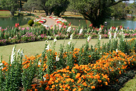 botanical garden at Pyin U lwin on Myanmar Standard-Bild