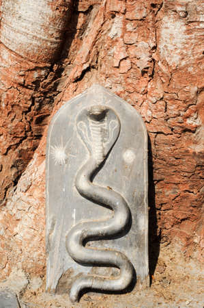 karnataka culture: Detail of Shiva-Virupaksha Temple located in the ruins of ancient city Vijayanagar at Hampi, India