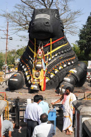 nandi: Mysore, india - 23 January 2015: The Nandi bull on Chamundi Hill is a particularly notable statue that dates from 1659 and pilgrims from all over India climb over 1000 steps to pay their respects