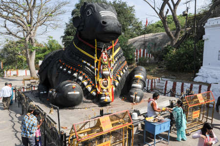 Mysore, india - 23 January 2015: The Nandi bull on Chamundi Hill is a particularly notable statue that dates from 1659 and pilgrims from all over India climb over 1000 steps to pay their respects