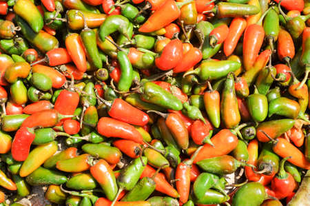 mysore: Chili peppers at the market of Devaraja at Mysore on India Stock Photo