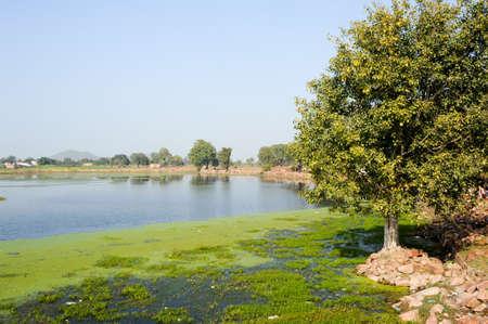 khajuraho: Lago Narora en el pueblo de Khajuraho en la India