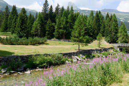 bernardino: River at San Bernardino on Mesolcina valley, Switzerland