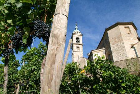 collina: The church of Sant Abbondio at Gentilino on the italian part of Switzerland Stock Photo