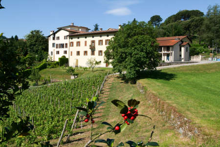 collina: Houses at the old village of Barca on the italian part of Switzerland Stock Photo
