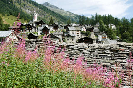 bosco: The village of Bosco Gurin on the Swiss alps