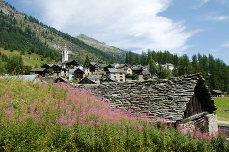 bosco: The village of Bosco Gurin on the Swiss alps