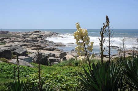 diablo: Punta del Diablo Beach, popular tourist place in Uruguay