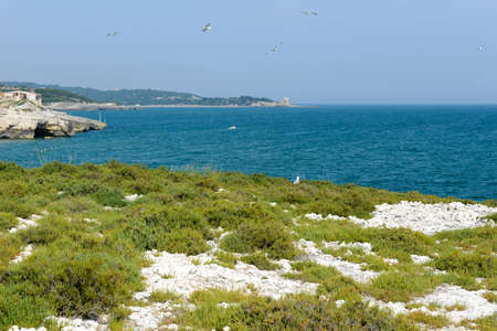 Island on the coast of Torre Canne on Puglia, Italy