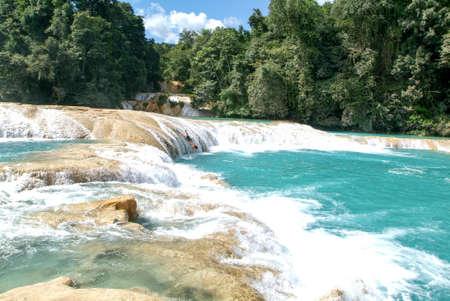 Aqua Azul, México - el 21 de enero de 2009: el hombre que se sumerge en las aguas del aqua Azul cascada en Chiapas, México Editorial