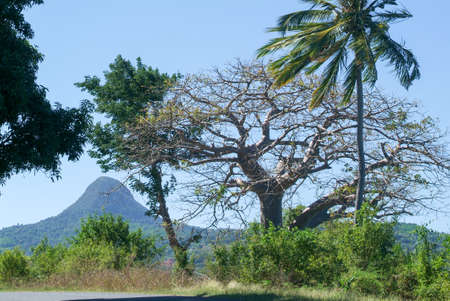 Landscape with mount Choungui on the island of Mayotte, France Standard-Bild
