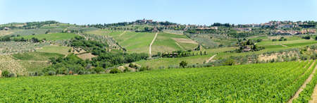 Rural landscape of Chianti vineyards on Tuscany in Italy Stock Photo