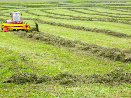 Engelberg, Switzerland - 3 August 2017: farmer on his tractor that moves the grass to make it dry at Engelberg on the Swiss alps