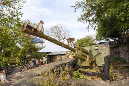 Old artillery piece of the red Khmer on mount Phnom Sampeau at Battambang, Cambodia