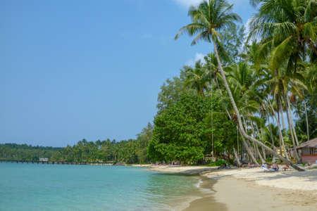Palm trees on beautiful tropical beach on Koh Kood island in Thailand Zdjęcie Seryjne