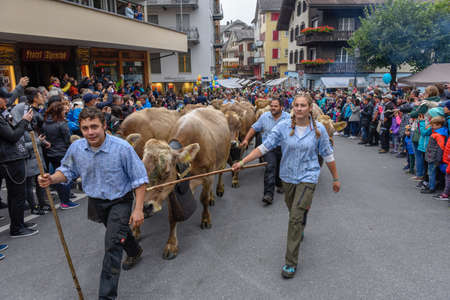 Engelberg, Switzerland - 29 September 2018: Farmers with a herd of cows on the annual transhumance at Engelberg on the Swiss alps Editorial