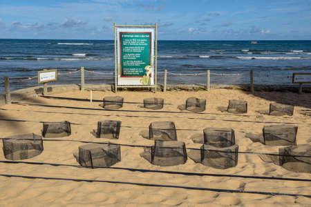 Lieux dédiés à la naissance des tortues au projet Tamar sur Praia do Forte au Brésil