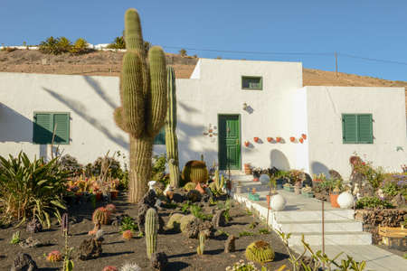 Traditional house with cactus garden at Femes on Lanzarote in the Canary islands, Spain Stock fotó
