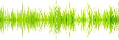 stereo cut: Frequency sound waves from nature.