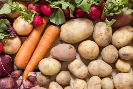 vida natural: hortalizas de raíz orgánicos dispuestos en un grupo colorido como una naturaleza muerta naturales para la alimentación sana y vegetariana Foto de archivo