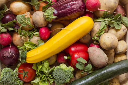 Organic vegetables arranged in a colorful group as a natural still life for healthy and vegetarian food Stock Photo