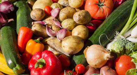 Fresh vegetables arranged in a colorful group as a sunny still life for organic healthy and vegetarian food