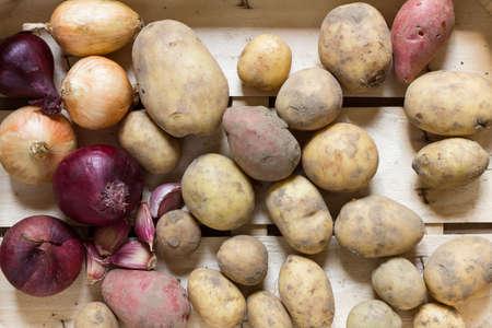 vida natural: Las patatas orgánicas y vegetales de raíz dispuestas en una caja de madera como una naturaleza muerta naturales para la alimentación sana y vegetariana Foto de archivo