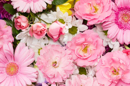 Soft roses, gerbera and chrysanthemum - flowers in pastel colors arranged as a natural background