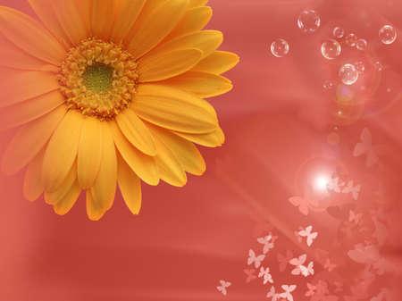 dynamically: orange imagination for a background