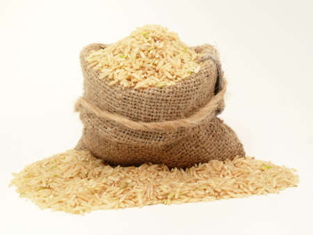 Rice, important basic food of millions humans in the world
