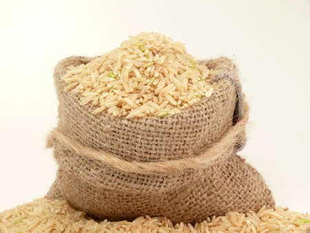 millions: Rice, important basic food of millions humans in the world