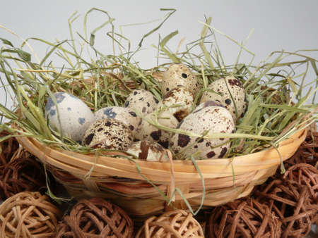 speckle: eggs, symbol of fertility and spring Stock Photo